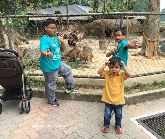 Jenjalan Ke Zoo Negara